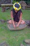 Cucini le piante e le erbe di passata della donna di Islander per medicina di erbe immagini stock