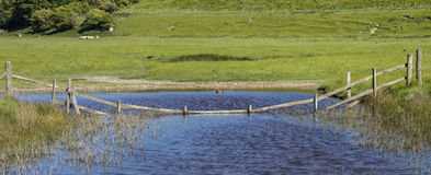 Cuckmere Haven in East Sussex Royalty Free Stock Photography