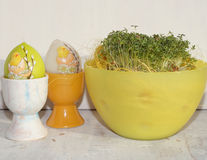 Cuckooflower , Fresh cress for Easter in a plastic dish Stock Photo