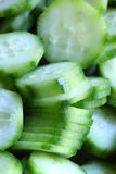 Cucmbers Royalty Free Stock Images