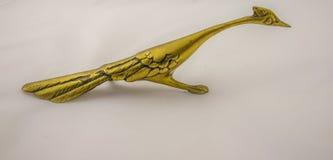 Cuco terrestre australiano dourado Fotos de Stock Royalty Free