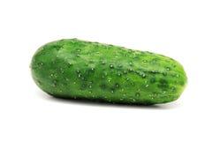 Cucumbe на белизне Стоковое Фото