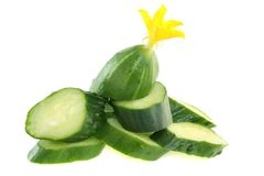 Cucumber royalty free stock photo