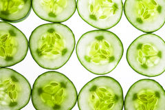 Cucumber. Background with green sweet cucumber stock image