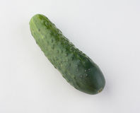 Cucumber. Good fresh product for salads Stock Images
