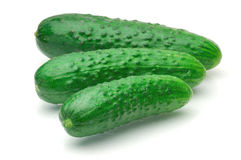 Cucumber. Fresh cucumber on a white background stock photo