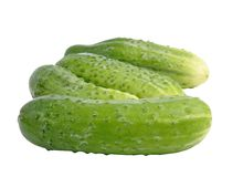 Cucumber Stock Image