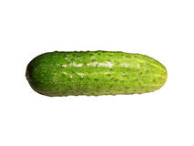 Cucumber. Picture of a green cucumber with white background Royalty Free Stock Image