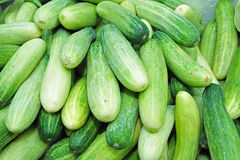 Cucumber. Green cucumber sell in the market Royalty Free Stock Images
