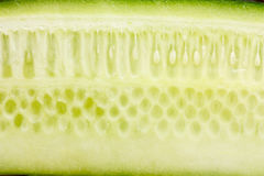 Cucumber. Fresh cut of cucumber. Closeup view Royalty Free Stock Photography
