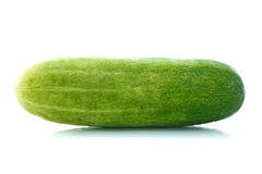 Cucumber. One cucumber isolated on white background stock images