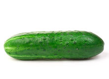 Cucumber. Small fresh green cucumber over white background Royalty Free Stock Photography