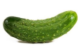 Cucumber. On white background royalty free stock photo
