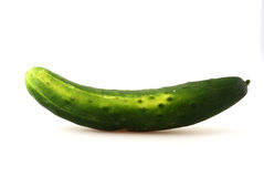 Cucumber. Frish, green cucumber in front of white background Stock Image
