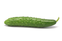 Cucumber Royalty Free Stock Photography