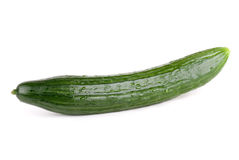 Cucumber. Full length cucumber on white royalty free stock images