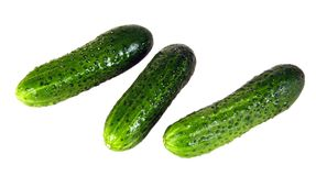 Cucumber. Very tasty and useful vegetable. It is used in kitchens of many people Royalty Free Stock Image