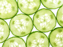 Free Cucumber Stock Images - 819404