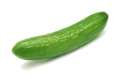 Cucumber. Stock Photography