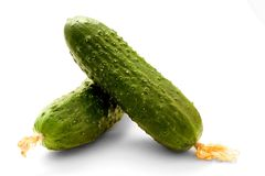 Cucumber. Safe and sound. white background Stock Photography