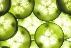 Cucumber background. Cucumber slices on shiny background Royalty Free Stock Images