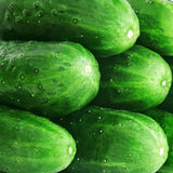 Cucumber background Royalty Free Stock Photos
