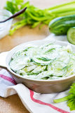 Cucumber with Celery and Dill salad Stock Photography