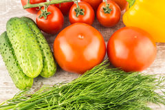 Cucumber, Cherry tomatoes, yellow bell pepper and dill. Vegetarian healthy food Stock Photography