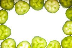 Cucumber circle portion isolated on a white. Background Stock Photos