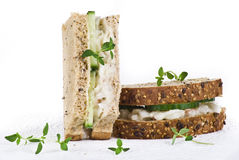 Cucumber and coleslaw sandwich Stock Images