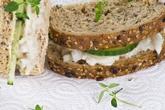 Cucumber and coleslaw sandwich Stock Image