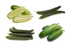 Cucumber collection Stock Images
