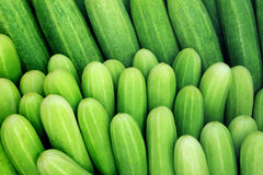Cucumber collection outdoor on market Stock Photography