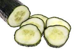 Cucumber - completely isolated Royalty Free Stock Photography