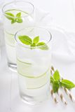 Cucumber cooler in tall glasses Royalty Free Stock Photos