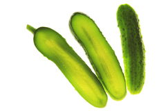 Cucumber (Cucumis sativus) Royalty Free Stock Images