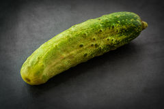 Cucumber. Royalty Free Stock Images
