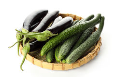 Cucumber and eggplant Stock Images