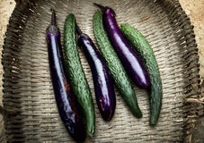 Cucumber and eggplant Stock Photography