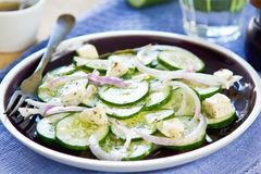 Cucumber with Feta salad Stock Photos