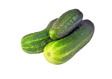 Cucumber gherkin Stock Photos