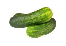 Cucumber gherkin Royalty Free Stock Photo