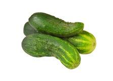 Cucumber gherkin Stock Photos