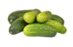 Cucumber gherkin Royalty Free Stock Photography