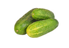 Cucumber gherkin on white Royalty Free Stock Image