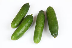 Cucumber. Green cucumbers with white background Stock Images