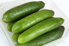 Cucumber. Green cucumbers with white background Royalty Free Stock Images