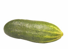 Cucumber. Green cucumber isolated on a white background Stock Image