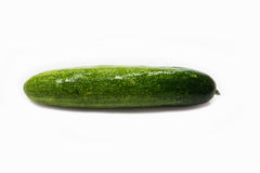 Cucumber green Royalty Free Stock Photo