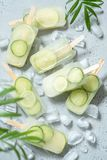 Cucumber, Green Tea and Lime Ice Cream Popsicles. With Mint royalty free stock images